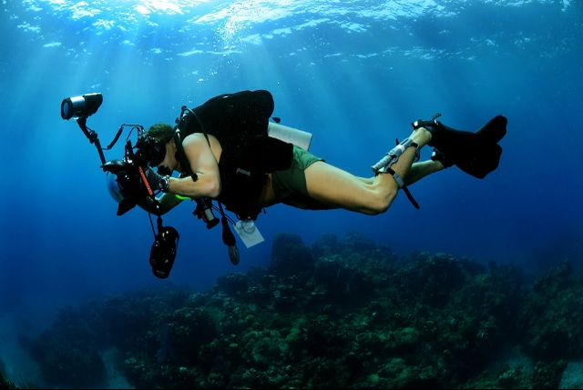 Top 10 Best Dive Camera Reviews in 2021