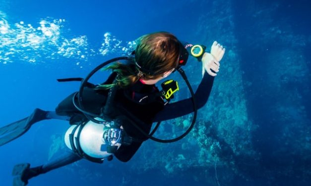 Best Dive Computers Reviews 2018 & How To Choose Yours