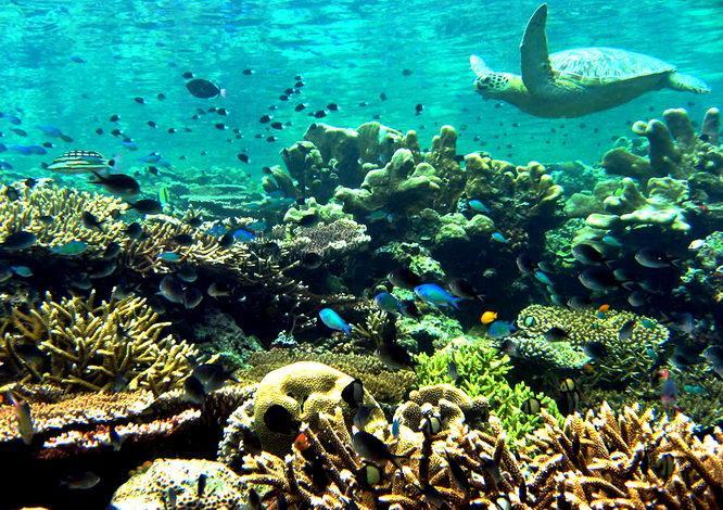 Malaysia-Pulau Sipadan