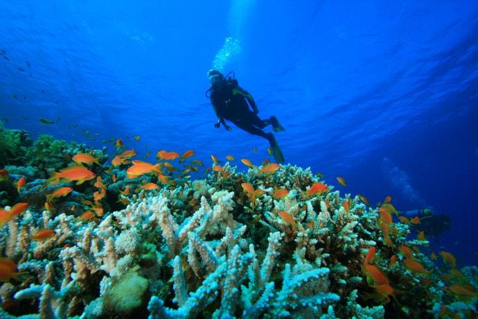 India-Andaman Islands