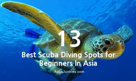 13 Best Scuba Diving Destinations for Beginners in Asia