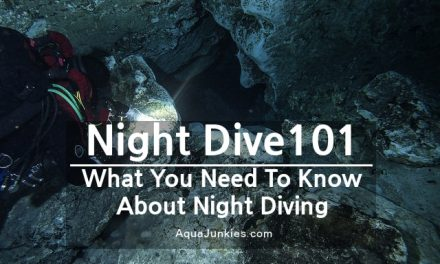 Night Dive 101: All things about Night Diving